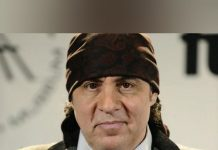 Steven Van Zandt, musician and actor